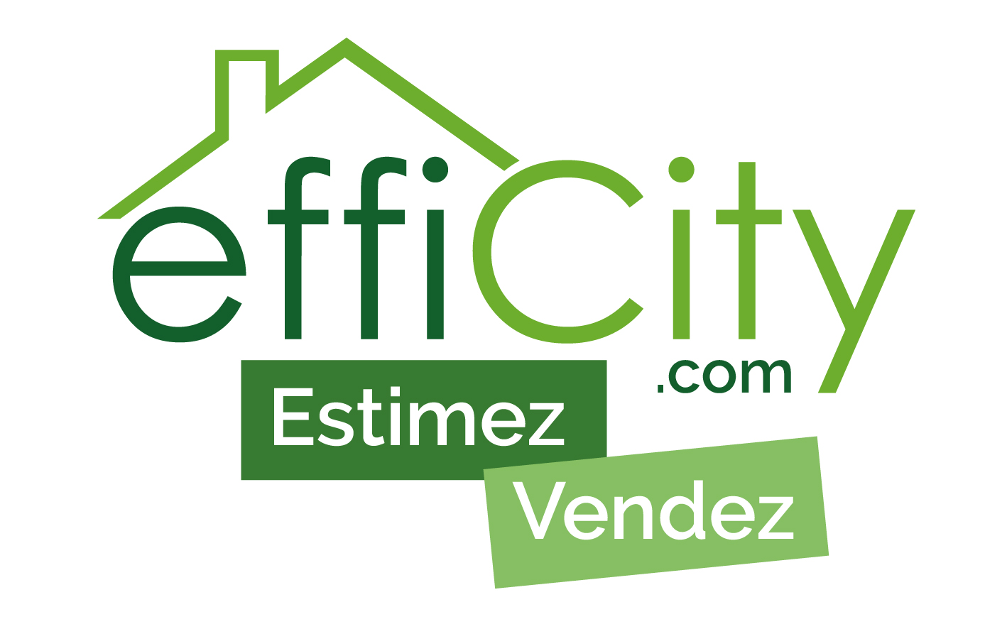 Logo EFFICITY couleur fond blanc